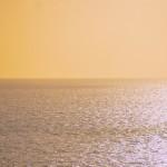 Ocean of plasticity s
